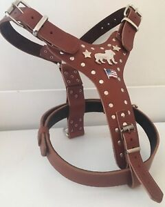 AMERICAN BULLDOG HARNESS - REAL LEATHER DOG HARNESS - WITH STARS AND FLAG