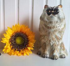 Perser Perserkatze Katze Große Spardose Moneybox Sass&Belle Cat Rassekatze