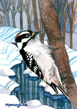 """ACEO Limited Edition 2.5""""x3.5""""- Woodpecker of mountain streams, Small gift"""