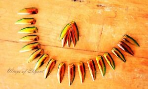 100 Rare Golden Red Elytra Jewel Beetle Insect Wings Craft Jewellery Supplies