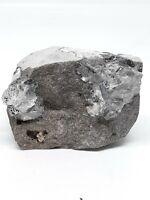 Herkimer Diamond Quartz Crystal on Matrix