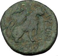 Lysimacheia in Thrace 309BC Ancient Greek Coin LION APOLLO Healer Cult   i36864
