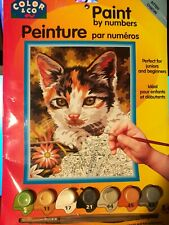 Paint By Number Kitten Charon 10027 Acrylic Fun Trendy Art Craft Painting Nos
