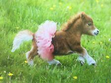 Avanti Birthday Greeting Card Happy Birthday Funny Pony in Tutu REDUCED!