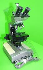 Olympus BH Compound Microscope with 10x, 20x, 40x and 100x Objectives