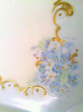 Fantastic antique Limoges W. Guerin France hand painted porcelain platter 1890's