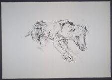 Oskar Kokoschka Hirtenhund Lithographie 1961
