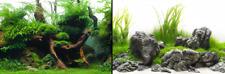 poster fond aquarium reversible 200 X 60 cm green/amazonia