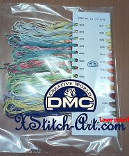 DMC Color Variations Floss, 1 meter pack, can be color card, total 36 meters