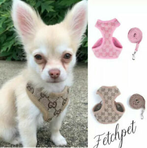 Dog Harness + LEAD Puppy Pet Dogs Vest for small breeds toy dog