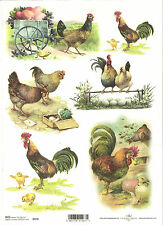 Rice Paper for Decoupage Scrapbooking Rooster Chicken Egg A4 ITD R470