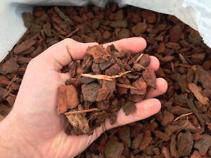 1 Litre - Pine Orchid Bark Coarse Substrate for Reptiles Spiders Insects - 1 Ltr