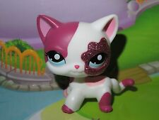 "Pet shop Chat Europeen* Petshop Kitty Cat #2291 ""Port gratuit/Free shipping""NEUF"