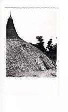 B81522  churuata de los indios piaroa terr amazonas  venezuela front/back image