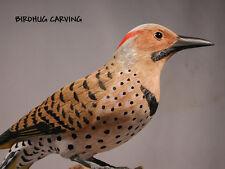 10 5/8 inches Flicker Orig Bird Carving /Birdhug