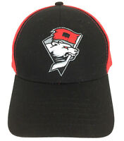Charlotte Checkers Cap Snapback Hat Hockey Mesh Trucker Baseball Logo Black Red