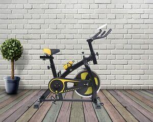 Sports Exercise Bike Cycle Indoor Training Fat Burn Machine Home flywheel