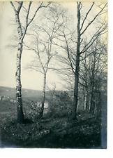 Allemagne, Elberfeld Vintage print.  Tirage argentique  11x16  Circa 1900