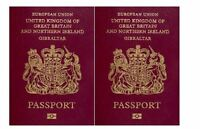 Travel Passport Actual Size for Cakes Edible Icing Decoration