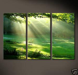 DAYLIGHT 3 Bilder Kunstdruck Leinwand Bild Grün Lichtung Natur Abstrakt Sonne