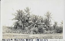 Postcard Aruba North West Indies Palm Trees Caribbean Islands 1943