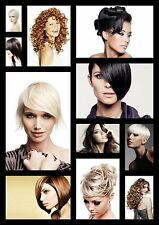HAIRDRESSING HAIRSTYLE COLLAGE HEALTH BEAUTY POSTER A4 260GSM PRINT