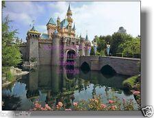 Disneyland Sleeping Beauty Castle Hub 8 x 10 Professional Main Street NEW