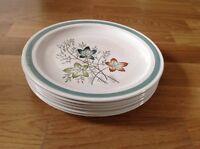 6 Dinner Plates  Burleigh Ware Burgess& Leigh Ltd ( Edinburgh Pattern )