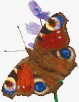 "Beautiful Peacock Butterfly - Animal Cross Stitch Kit - 14 Count Aida 8.6"" x 11"""