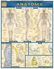 Quick Study Medical Anatomy Laminated Reference Academic Guide Bar Chart Outline