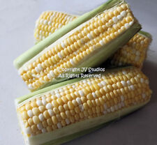Peaches and Cream Sweet Corn Seeds! Two Colors Two Flavors!