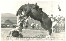 RPPC-Getting off at Reno NV, Reno Rodeo, Rider being thrown from horse