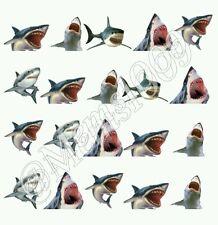 Shark Nail Art (Water Decals) Shark Week Nail Decals