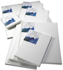 Winsor & Newton Painting Canvases