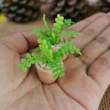 Set of 2 pcs.Green Fern Plant in Terracotta Pot Dollhouse Miniature Home Decor