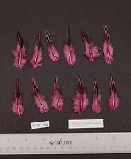 """Twelve 2"""" to 2.25"""" Pink Grey Jungle Fowl Cock Hackle Feathers Fly Tying"""