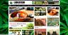 Cannabis News / Affiliate product website,100% automated -Premium designed-