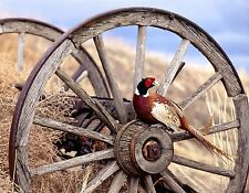RING NECK PHEASANT WAGON WHEEL  MOUSE PAD  IMAGE FABRIC TOP RUBBER BACKED