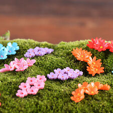 10 Moss Bonsai Miniature Flower Landscape Fairy Party Garden Craft Decorations