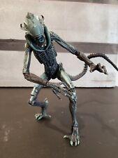 "Aliens vs Predator (Arcade) - 7"" Scale Action Figure - Arachnoid - NECA"
