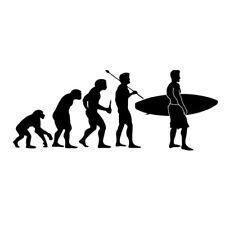 SURFING EVOLUTION CAR DECAL