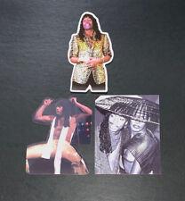Rick James and Grace Jones Sticker Pack UV Vinyl Die-cut water proof Funk disco