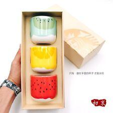 New Starbucks 2018 China Summer Style Of Fruit Cup Mug Set