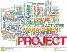 PROJECT MANAGEMENT SCHEDULLING PROGRAM MS Microsoft 2013 Compatible