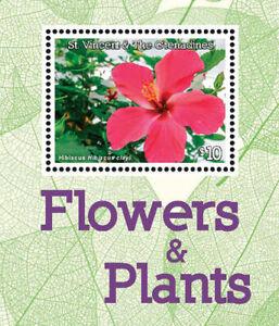 St. Vincent 2016 - Flowers and Plants, Flora, Hibiscus - Souvenir Sheet - MNH