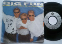"Big Fun / Can't Shake The Feeling 7"" Single Vinyl 1989"