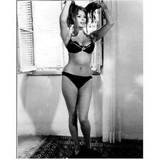 Sophia Loren Holding Hair in Bikini by Window 8 x 10 Inch Photo