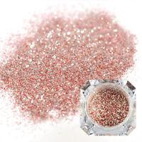Nail Glitter Platinum Sequins Powder Colorful Nail Art  Decoration Tools