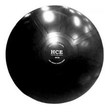 HCE 85cm Gym Swiss Ball with Pump