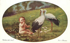 Austria 1922 Storks Baby Boy Painting Art Postcard Cover Linz Wein 273 Inflation